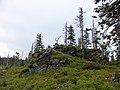 Gipfelfels des Svaroh.jpg