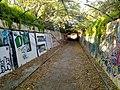Gladesville NSW 2111, Australia - panoramio.jpg