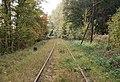 Gleise Muldentalbahn 20071008.jpg