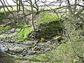 Glovershaw Beck, Bingley - geograph.org.uk - 762081.jpg