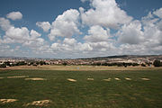 Golf fields 2422.jpg