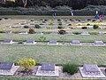 Gravestones in Chittagong War Cemetery.jpg