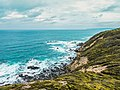 Great Otway National Park on a cloudy day.jpg