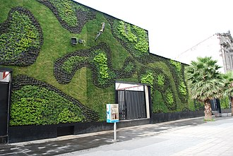 Green wall - Green wall at the Universidad del Claustro de Sor Juana in the historic center of Mexico City.