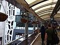 HK Central The Mood 38 Lyndhurst Terrace Jan-2016 Central-Mid-Levels escalators interior Jan-2016 DSC.JPG