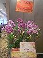HK Kwun Tong 鱷魚恤中心 Crocodile Centre 觀塘彩晶軒 好彩集團 Ho Choi Group 2009 flowers.JPG