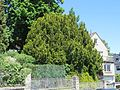 Hagen, Dorotheenstraße 18 (2).JPG