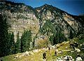 Hampta Valley - panoramio.jpg