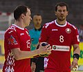 Handball-WM-Qualifikation AUT-BLR 038.jpg