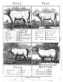 """Hannah Glasse's """"The art of cookery made plain and easy"""" Wellcome L0014982.png"""