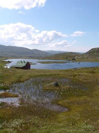 Hardangervidda - Hardangervidda landscape