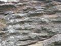 Heeseberg SteinBr 2014-06-01 11.59.21.jpg