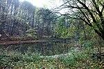 Heldrungen, der Fischteich in Nähe des Waldschlößchen.jpg