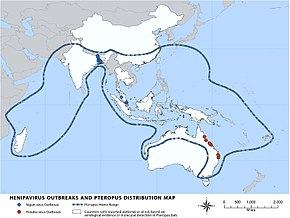 A map of Madagascar, Asia, and Oceania. Madagascar, Southern and Southeast Asia, and most of Oceania is delimited as flying fox distribution. The northeast coast of Australia shows small red icons that indicate Hendra virus outbreaks. South and Southeast Asia has several blue icons that indicate Nipah virus outbreaks.