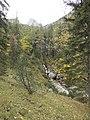 Herbstlicher Wald - panoramio (8).jpg