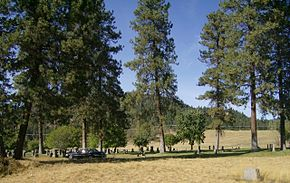 Highland Cemetery - Colville Washington crop.jpg