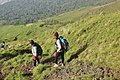 Hiking down the 'death wall' of Mount Cameroon.jpg