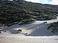 Hillside looking south - panoramio.jpg