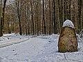 Historischer Grenzstein im Garlstorfer Wald, Gemeinde Garlstorf, Landkreis Harburg, Niedersachsen.jpg