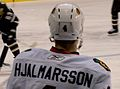 Hjalmarsson (5441803981) (cropped).jpg