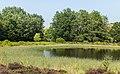 Hortus Haren d.j.b 10.jpg