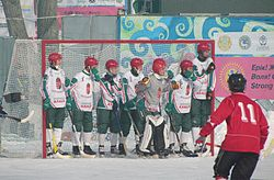 Hungary bandy team vs Canada.JPG