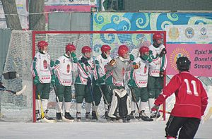 Goal (sport) - Hungarian players prepare to defend their goal against a Canadian corner-stroke at the 2012 Bandy World Championship. The goal-keeper has a different colour on his jersey, here grey.