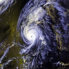 Image satellite de l'ouragan Iniki proche de son pic d'intensité.