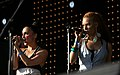 I-Wolf and The Chainreactions Donauinselfest 2014 22.jpg