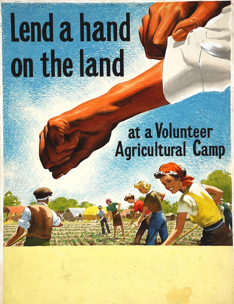 INF3-105 Food Production Lend a hand on the land at a Volunteer Agricultural Camp Artist Nunney.jpg