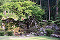 Ichijodani Suwa residence ruin garden b.jpg