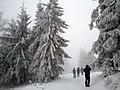 Icy World - panoramio.jpg