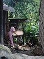 Ifugao village (3294260123).jpg