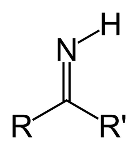 File:Imine (primary) Skeletal