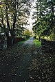 Inviting driveway off Stratherrick Road, Inverness - geograph.org.uk - 274896.jpg