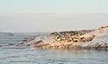 Iqaluit outskirts2.jpg