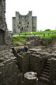 Ireland 2009, climbing the ruins at Trim Castle.jpg