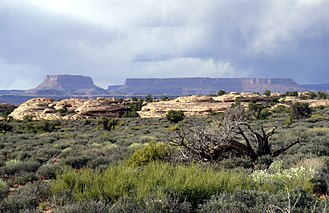 "Mesa - Ground-level view of mesas in the Canyonlands National Park, Utah, known as the ""Islands in the Sky""."