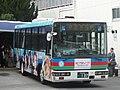 Izuhakone-Mishima107.jpg