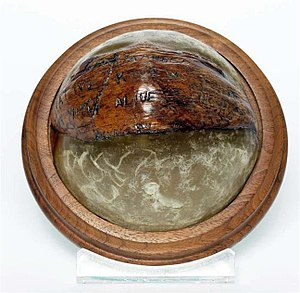 "John F. Kennedy Presidential Library and Museum - President Kennedy had the coconut made into a paperweight. It sat on the ''Resolute'' desk, which Kennedy used in the Oval Office. The message reads: ""NAURO ISL… COMMANDER… NATIVE KNOWS POS'IT… HE CAN PILOT… 11 ALIVE… NEED SMALL BOAT… KENNEDY"""