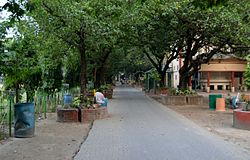 Jadavpur University Chemical Walk.jpg