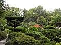 Jardin japonais - pont (Toulouse) (5).jpg