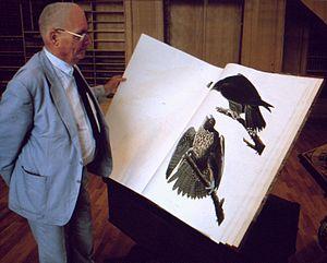 Jean Dorst - Image: Jean Dorst consultant The Birds of America d'Audubon au MNHN 1989