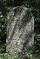 Jewish cemetery Ulanow IMGP4926.jpg