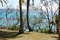 Jinek Bay, Lifou, New Caledonia, 2007 (2).JPG