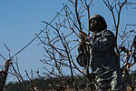 Joint Operational Access Exercise 13-02 130224-F-US032-562.jpg