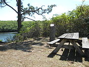 Jonathan Dickinson State Park 039