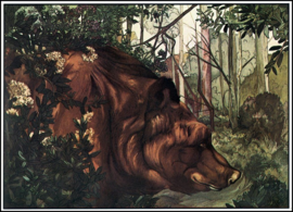 Jungle Book (1913) Baloo in the Forest.png