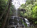 Juscimeira - State of Mato Grosso, Brazil - panoramio.jpg