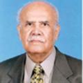 Justice Abdul Razak Thaheem.png